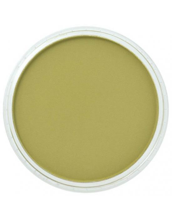 Pan Pastel Bright Yellow Green shade