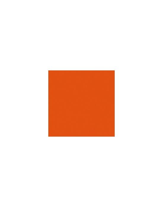 Acrylic paint Carrot
