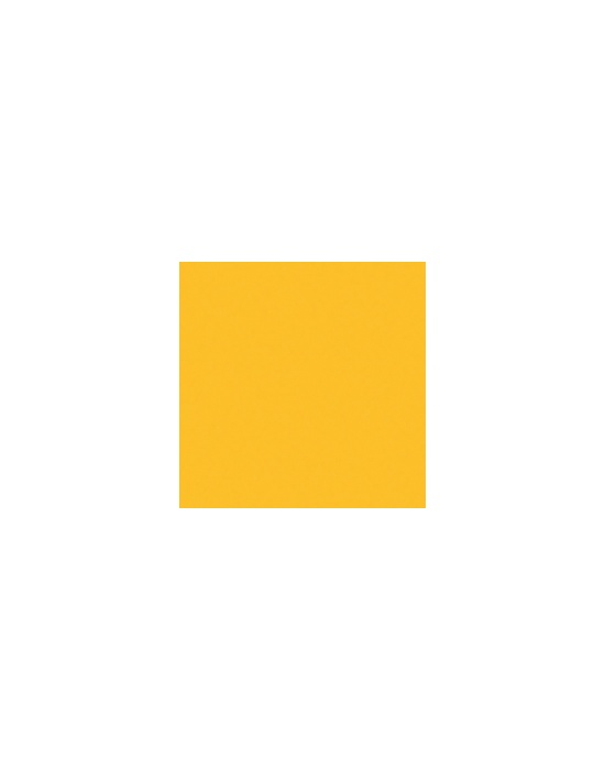 Acrylic paint Yellow jacket
