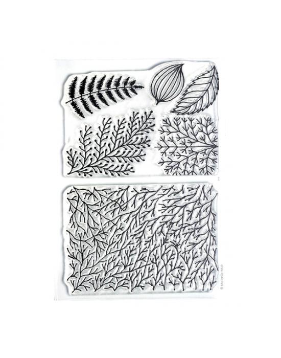 Texture M. Muir Forêt