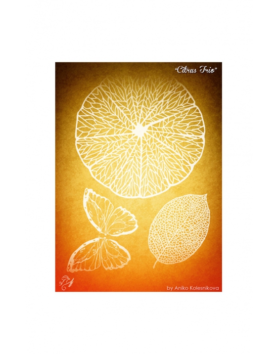 Citrus Trio Texture stamp