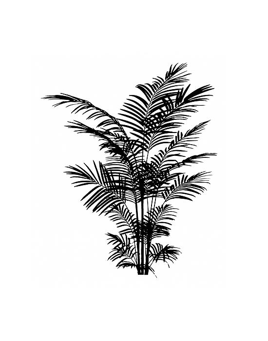 Tampon Bois Palmes