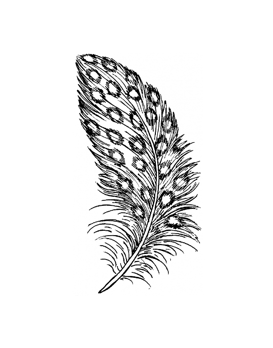 Wood stamp Feather