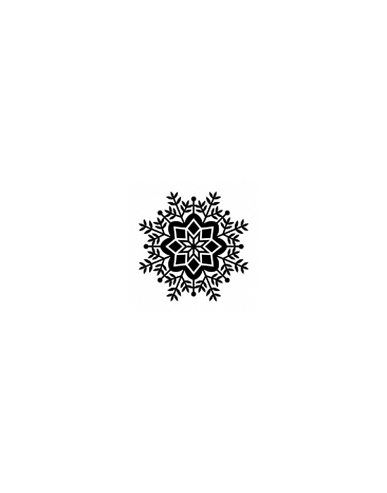 Tampon Bois Flocon 2 - 3 x 3 cm