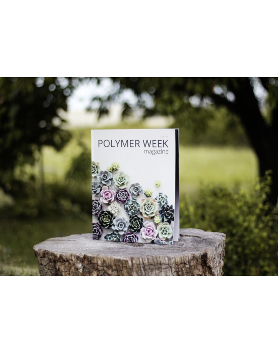 Polymer Week 2019 No 2