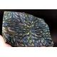 Ludmila Bakulina Texture Dragon scales