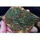 Ludmila Bakulina Texture Leaf