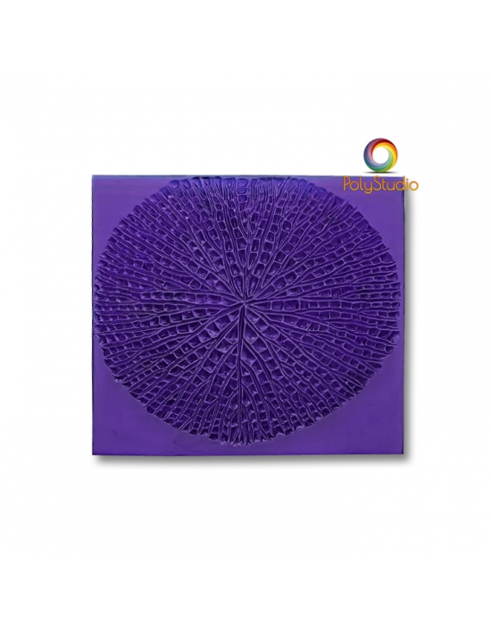 Ludmila Bakulina Texture Urchin