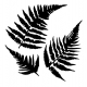 Ferns Stencil