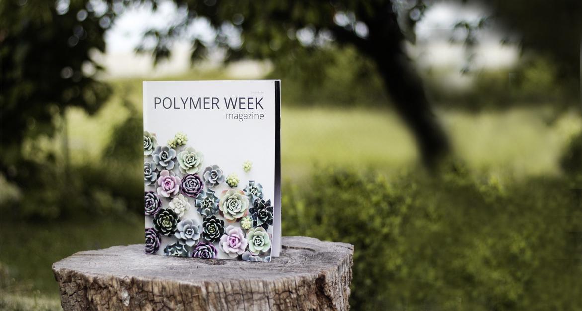Polymer Week 2019 Winter